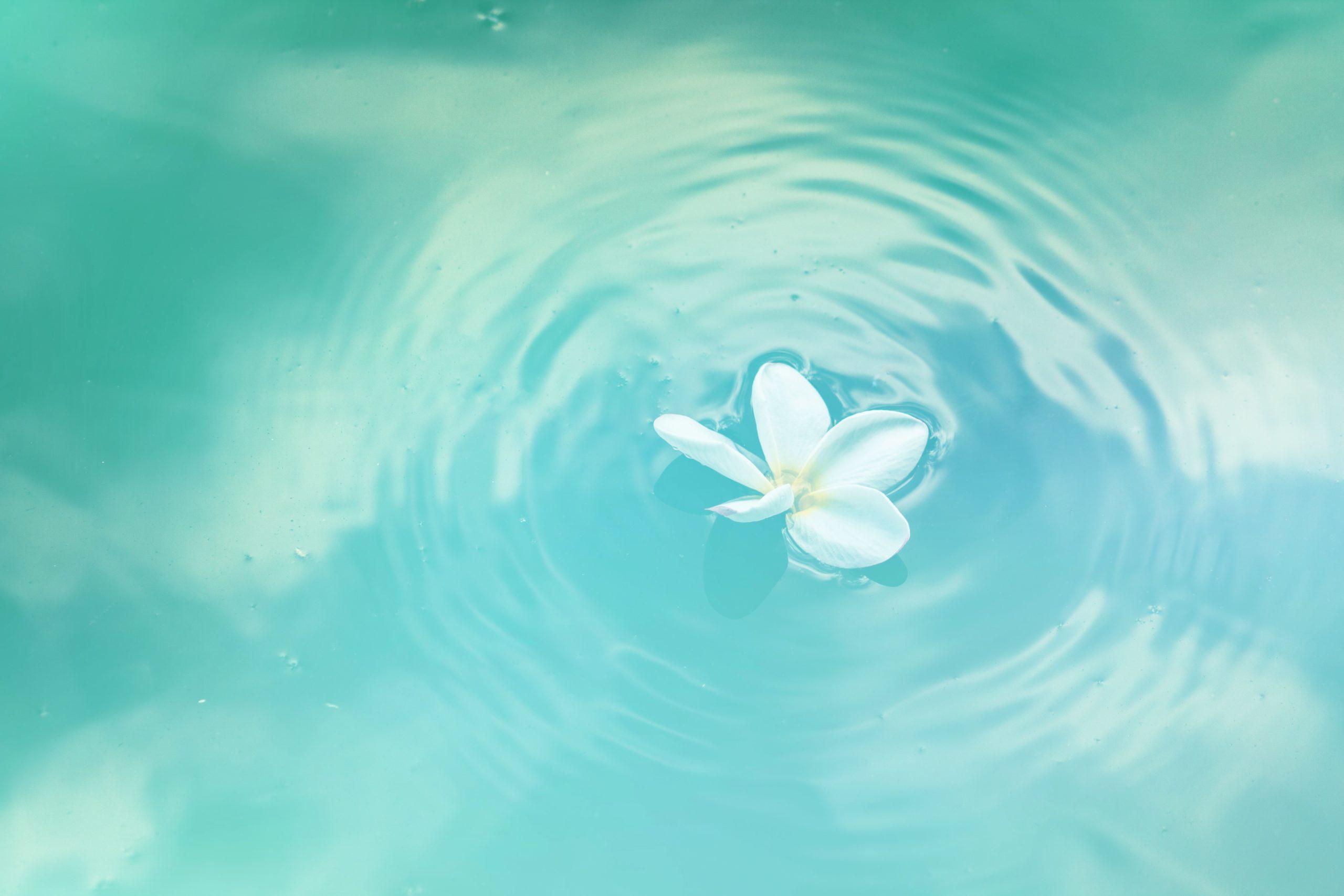 7月5日(日)・16日(木)・25日(土)「『根本から癒されてみない?』一悟術ヒーリング無料個別相談会」@Zoom